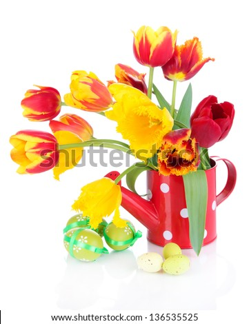 Easter composition with fresh tulips and easter eggs isolated on white