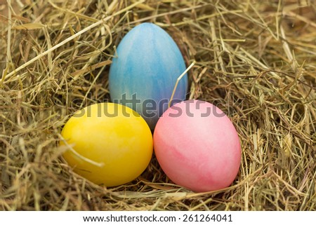 Easter concept: pastel color eggs in nest - stock photo