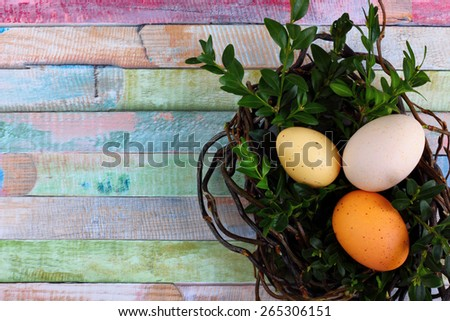 Easter decoration / card - easter fresh eggs in a nest made of wicker with boxwood twigs on wooden colorful background - space for text- overhead view - stock photo