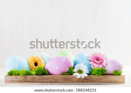 easter decoration eggs and flowers on a wood white copyspace - Easter Decoration