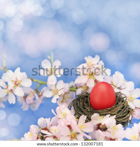 Easter egg in the nest on the almond tree - stock photo
