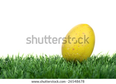 easter egg on green grass