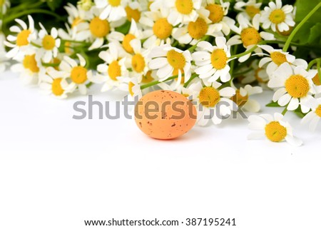 Easter egg on spring background daisy with blurred focus