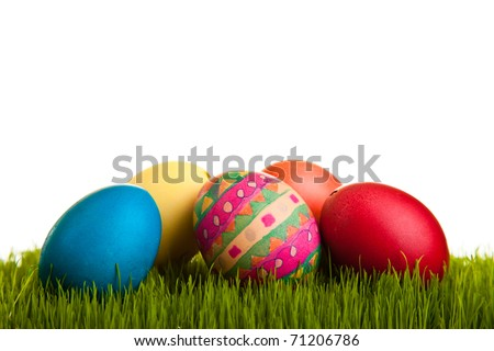 Easter eggs and chickens on green grass on white isolated background