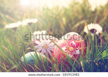 easter eggs and daisies in the grass - stock photo
