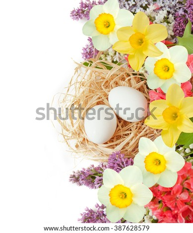 Easter eggs and lilac with narcissus bunch isolated on white background