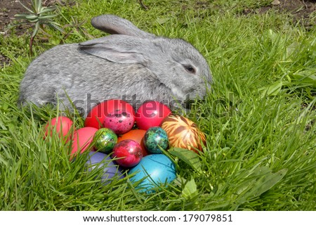 Easter eggs and the Easter bunny on grass