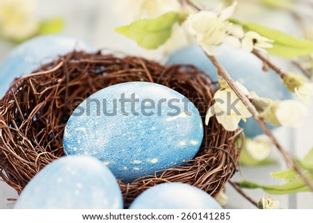 Easter eggs colored a natural blue with extreme shallow depth of field. Selective focus on egg in nest. - stock photo