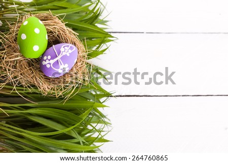 Easter eggs in a bird's nest. studio shot - stock photo