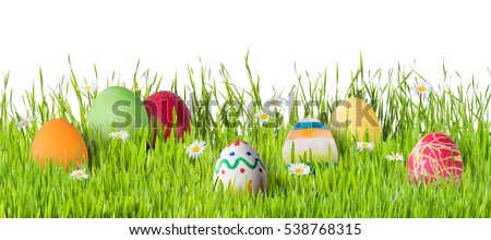 Easter eggs in grass with flowers isolated on white background, for your design