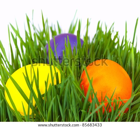 Easter eggs in green grass over white background - stock photo