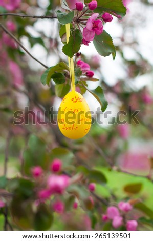 Easter eggs on a branch of Apple blossoms