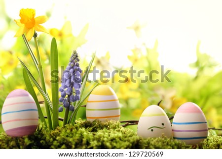 Easter eggs on meadow with spring flower - stock photo