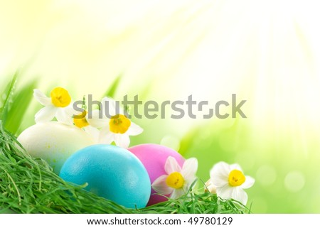 Easter Eggs sitting on grass in sunshine,Large copy space. - stock photo