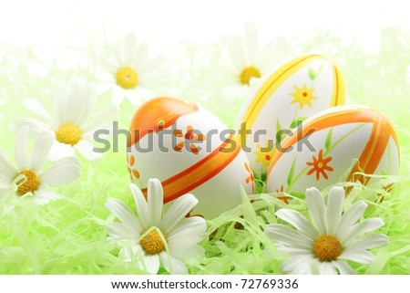 Easter eggs with daisy on grass,Closeup. - stock photo