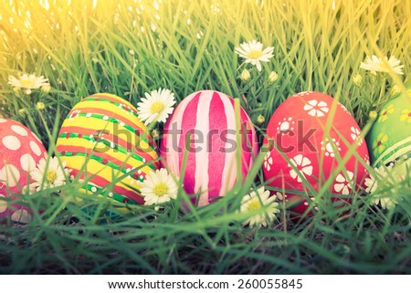 Easter Eggs with flower on Fresh Green Grass ( Filtered image processed vintage effect. ) - stock photo