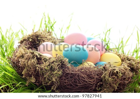 Easter Eggs with Nest on Fresh Green Grass