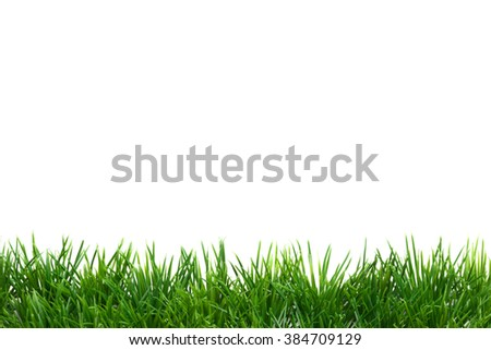 Easter Grass border, isolated on white, plane - stock photo