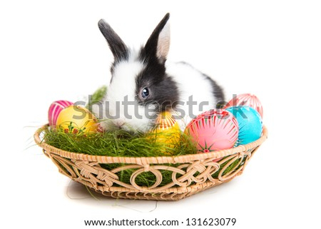 Easter greeting card with easter bunny, grass and eggs in nest, white background - stock photo