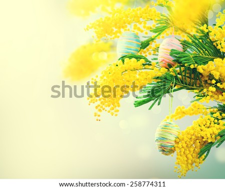 Easter holiday mimosa flowers bouquet decorated with colorful eggs. Spring Flowers bunch. Beautiful colourful handmade eggs. Elegant Easter gift. Springtime. Beautiful Easter background - stock photo