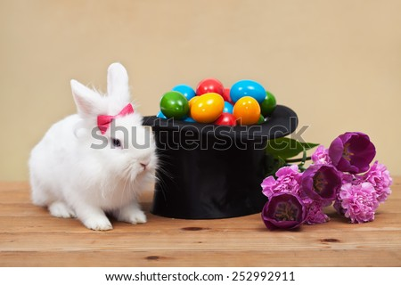 Easter magic with bunny guarding colorful eggs in magician hat and spring flowers- shallow depth of field - stock photo