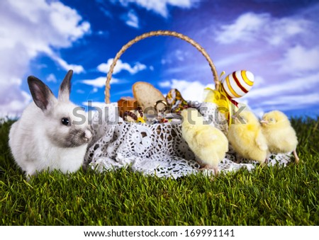 Easter, Rabbit, Chicken, Eastern basket