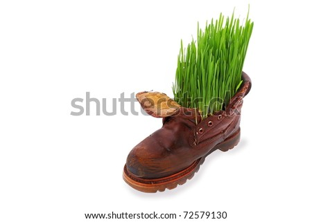 Easter, spring and force of nature Spring comes everywhere, even in the old soldier's boot. - stock photo