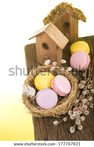 easter still life - cookies, a willow, a nesting box and a nest for birds - stock photo