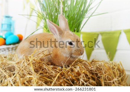 Easter still life, ginger rabbit on a haystack - stock photo