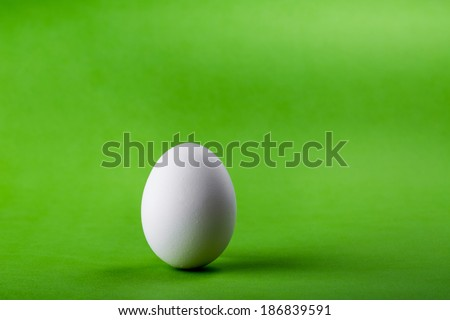 easter white egg on a green background - stock photo