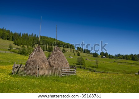 Eastern european mountain scenery with haystacks