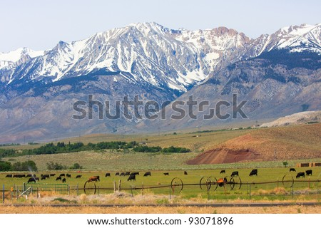 Eastern Sierra Nevada and pastures - stock photo