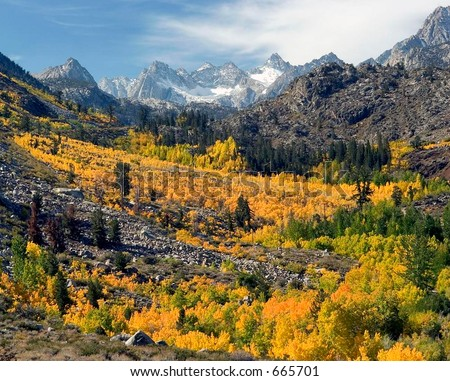Eastern Sierras in the Fall. Aspendall; northwest of Bishop, California