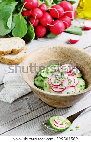 Easy spring salad of fresh cucumbers and radishes with green onion.Selective focus - stock photo
