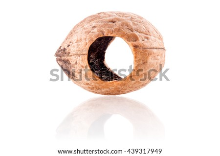 eaten walnut with a hole by a squirrel - stock photo