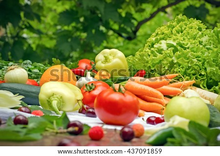 Eating healthy food - organic food - stock photo