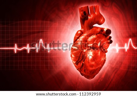 ECG abstract backgrounds with human 3D rendered heart - stock photo