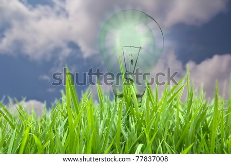 eco concept - stock photo