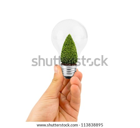 eco concept:hand holding light bulb with christmas tree