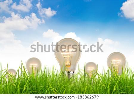 Eco concept - light bulb grow in the grass against blue sky - stock photo