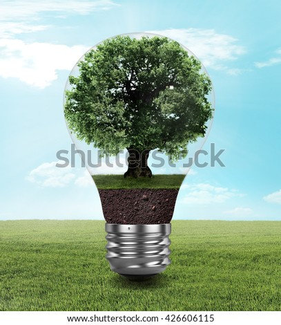 Eco concept. Light bulb with a tree inside on field. - stock photo