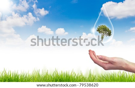 Eco concept : tree in water drop against the sun and the blue sky - stock photo