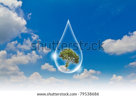Eco concept : Water drop  in the sky  with tree inside - stock photo