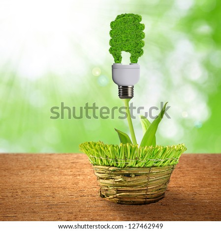 eco energy bulb - stock photo