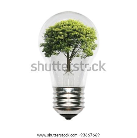 eco energy bulb. - stock photo