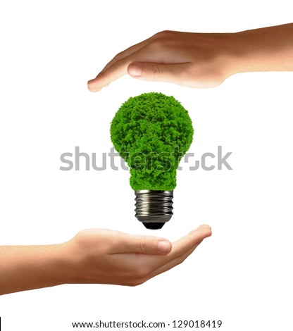 eco energy bulb in hands isolated on white