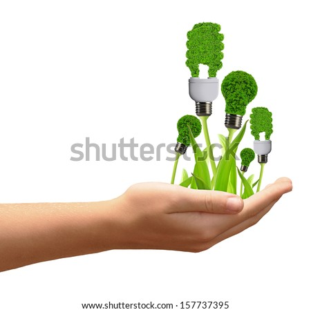eco energy bulbs in hand isolated on white  - stock photo