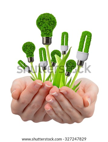 eco energy light bulbs in hand isolated on white background - stock photo