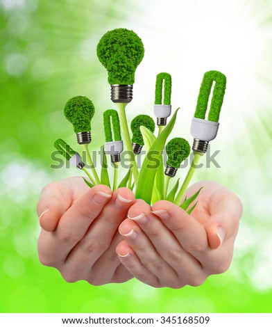 Eco energy light bulbs in hands on natural green background - stock photo