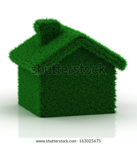 eco grass house on a white background